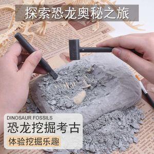 Dinozor fosilleri kazı, tiktok, pişmiş toprak ordusu, çocuk DIY yaratıcı bilgelik JNM23