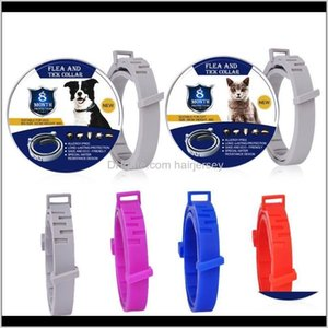 Collars Leashes Bayer Seresto 8 Month Flea Tick Prevention For Cats Dog Repellent Collar Insect Mosquitoes Ej22F Ywqpr