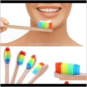 4Pcs Tooth Natural Colorful Travel Rainbow Oral Hygiene Soft Toothbrushes Teeth Pv2L7 Bjeu7