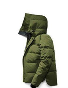 Высочайшее качество Мужские гусиные куртки Весов Homme Открытый зима Jassen Верхняя одежда Большой Мех с капюшоном Фанриума Мантон Даунс Куртка Пальто Партон Парки Дудуне