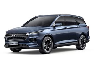Car The new wuling capgemini gasoline 1.5 T automatically flagship business class China sales first MPV A modified car