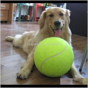 & Chews 24Cm Dog For Chew Toy Inflatable Tennis Ball Signature Mega Jumbo Pet Toys Supplies Outdoor Cricket Qufsp Ooqwm