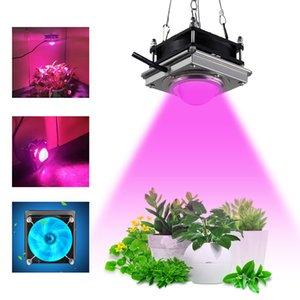 COB Kurşun Büyümek Işıklar Kontrol Tam Spektrum LED 60 W Bitki Büyüme Lambası Kapalı Sebze Etli Çiçek Ve Hidroponik Yetiştirme Sebze Açık Güneş Işık