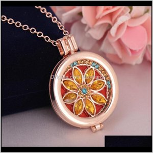 Lockets & Pendants Jewelryessential Oil Necklaces Locket Necklace Women Aromatherapy Diffuser Necklces With 3 Color Pads Fashion Drop Deliver