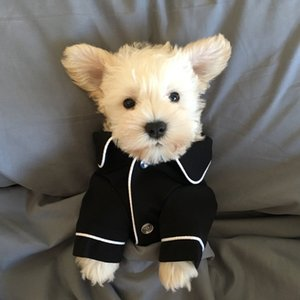 Small Dog Apparel Coat Pet Puppy Pajamas Black Pink Girls Poodle Bichon Teddy Clothes Cotton Boy Bulldog Softfeeling Shirts Winter 528 S2