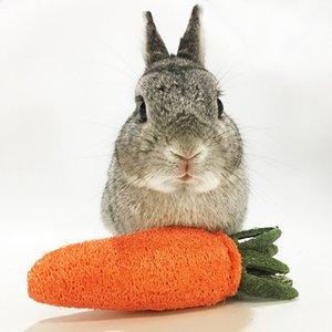 Hamster Rabbit Chew Toys Chinchilla Accessories Loofah Sponge Carrot for Animal Guinea Pig Bite Toy Molar Radish Pet Stuff