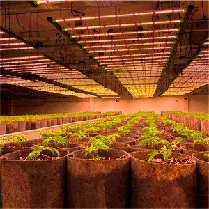 TL6000 8000 8 BARS Grow Lights 640w PRO high uoml bloomevg-08C Samsung lm281b 3500k Light LED Plant Growth Lamp Full Spectrum Hydroponic