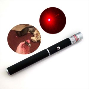 5mW 532nm Red Light Beam Laser Pointers Pen for SOS Mounting Night Hunting Teaching Meeting PPT Cat Toys