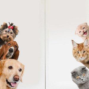 Cartoon Dogs Cats Wall Sticker Funny Door Window Wardrobe Fridge Decoration Decals For Home Kids Room Animal Art Stickers