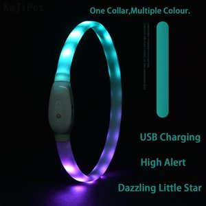 Dog Collars & Leashes Collar LED Light USB Discoloration Luminous Perro Luz Flashing Rechargeable Glowing For Pet
