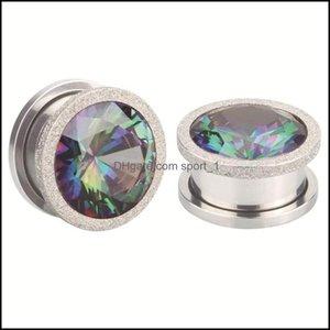Plugs & Body Jewelryalisouy 2Pc Stainless Steel Top Quality Crystal Zircon Tunnels Plug Screw Fit Colorf Flesh Gauge Ear Expanders Jewelry 1