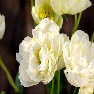 양귀비 인공 꽃 Somnus 공장 라텍스 가짜 꽃 홈 장식 양귀비 꽃 민첩한 웨딩 파티 장식 DSF0613