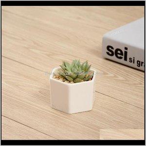 & Ceramic Bonsai Pots Wholesale Mini White Porcelain Flowerpots Suppliers For Seeding Succulent Indoor Home Nursery Planters Hhb1706 R Odxwj