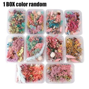 Random Mix Color Flower Pressed Dried Natural Leaves Jewelry DIY Resin Craft Materials Bookmarks Epoxy Handmade B7U6 Decorative Flowers & Wr