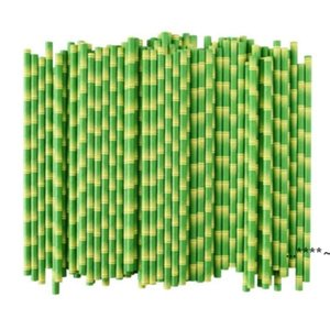Biodegradable Bamboo Straw Paper Green Straws Eco Friendly 25 Pcs a Lot on Promotion FWE5743