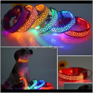 Collars Leashes Supplies Home Garden Drop Delivery 2021 Solid Color Nylon Band Dog Pet Flashing Collar Night Light Up Led Necklace Adjustable