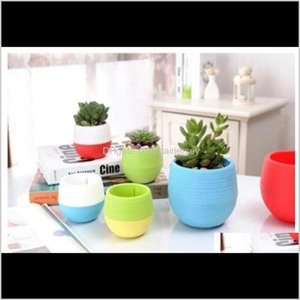 Planters & Pots Mini Round Plastic Succulent Plant Flower Pot Garden Home Office Desktop Decor Micro Landscape Planter Unbreakable Flo X2S4W