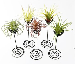 Wholesale Garden Decorations Air Plant Stand Holder Black Iron Spiral Flower AirPlant Container Tillandsia DHE5831