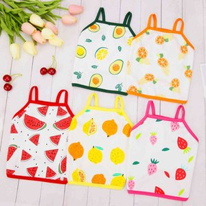 Dogs Clothes Dog Apparel Pet Fruit Vest Spring and New Clothes 21 Short Board Summer Suspender Skirt
