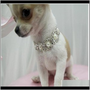 Bling Rhinestone Collar Pearl Necklace Alloy Diamond Necklaces Pet Puppy Accessories Rkwoh Dcvrx