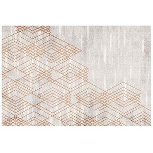 Carpets Bedroom Nordic Big Carpet Decorate Floor Mat Large Area Rug For Living Room Washable, 120cm×160cm