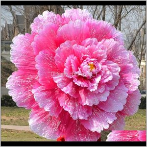 Arts And Arts Crafts Gifts Home Garden Drop Delivery 2021 3D Dance Performance Peony Flower Umbrella Chinese Multi Layer Cloth Umbrellas Stag