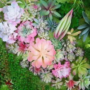 الزخرفية إكليل الزهور الوردي نباتات العصارة الاصطناعية ديكور زهرة ترتيب الملحقات الفن وهمية سطح المكتب بونساي الرئيسية حديقة ديكو