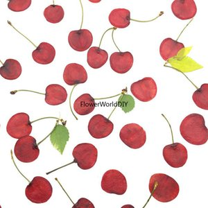 5pcs Dried Pressed Red Cherry Slices Plant Herbarium For Jewelry Photo Frame Phone Case Bookmark Postcard Invitation Card DIY