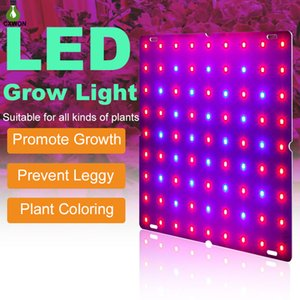 Red Blue Spectrum Plant Grow Light 169 81 leds 2835 Lamps Beads Plants Growth Lamp LED Lights with stainless steel hook