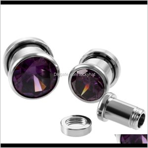 Eyebrow Pair Stainless Steel Top Quality Crystal Zircon Tunnels Plug Screw Fit Colorful Flesh Gauge Ear Expanders Jewelry Olljq Vzvw6