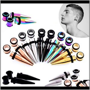 & Drop Delivery 2021 36Pcs Surgical Steel Ear Gauges Tap Stretcher Stretching Kit Tunnels Plugs Expander Body Jewelry Earring Wholesale R7C1J