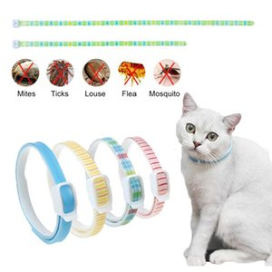 Cat Anti Flea Mite Tick Collar Pet Dog Insetto Repellente Regable Zanzara regolabile Collana per forniture Collari Guinzagli