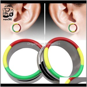 625Mm Colorful Plugs Tunnels Stainless Steel Plug Oor Expander Stretchers Piercing Ear 8I04W Reqpj