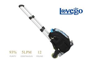 Due concentratori di ossigeno portatile Lovego funzionano 24 ore su 24, 5 giorni su 7, 5 giorni su 24, flusso continuo, 93% di purezza di ossigeno speciale per auto e viaggi