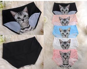 Intimo sexy da donna sexy con gattino carino Cat Kitty Preven Bottom-Private pantaloni impermeabili Un sito Fit XS S M F130 30 pezzi