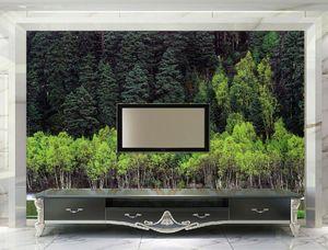fond d'écran moderne pour le salon Woods Forest Lake Nature papier peint en bois