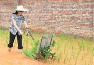 Manual trasplantadora de arroz portátil, manivela trasplantadora de arroz con cáscara, plantador manual, sembradora