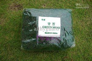 Musgo Artificial musgo Verde plantas decorativas vaso de relva artificial de seda Flor acessórios para fornecimento de decoração vaso de flores