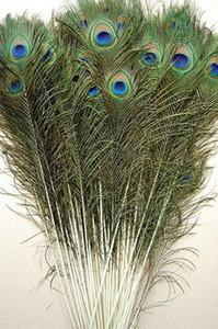 ¡Precio al por mayor! 200pcs / lot, longitud: 25-30 cm, hermosa pluma de pavo real natural!