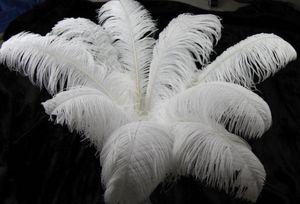 30-35 cm Belle piume di struzzo per fai da te gioielli artigianali fare decorazioni festa di nozze accessori decorazione di nozze G1093
