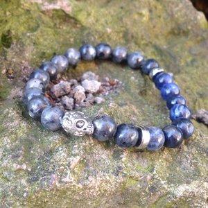 SN0431 Серебряный череп браслет мужские DIY стрейч браслет натуральный камень Ларвикит Бразилия содалит камень Браслет для человека