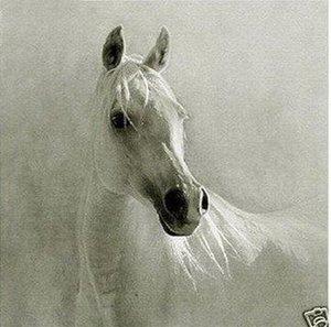 Обрамленная красивая белая лошадь, Pure Handpainted Современный Абстрактный Декор Стены Искусства Живопись Маслом На Толстом Холсте
