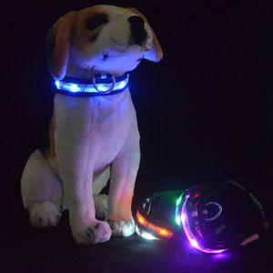 LED Bira Ayı aydınlık pet köpek yaka, naylon dokuma fiber optik yanıp köpek kolye S / M / L / XL