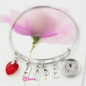New Arrival Interchangeable Red Crystal Heart Initial Letter HOPE Charms Wire Expandable Snaps Bangles Bracelets for women