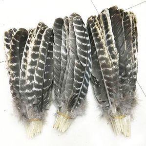 plumas de cola de pavo salvaje preciosas hermosas al por mayor 8-12inches / 20-30cm (muchos tamaños para que usted elija)