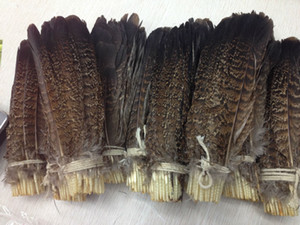 Wholesale 10-100 PCS precious USA wild turkey tail feathers 6-8 inches  15-20 cm Festival and party supplies > > celebration party supplies