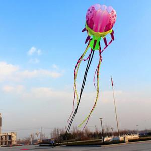 Los detalles sobre los modelos 2019 Software Original cometa medusas flor pintada de demostración