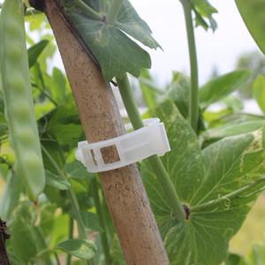 100 unids Planta de tomate Clips de soporte Jardín de calidad plástica Vegetal Flor Vid Arbustos Clips vegetales Para Invernadero