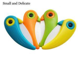 Coltello da tasca in ceramica mini coltello da uccello in miniatura Coltello da cucina in ceramica con manico in ABS colorato Utensili da cucina Gadget