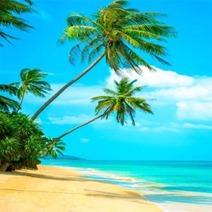 Fotografía con temas de playa Telones de fondo Palmeras Cielo azul Agua de mar Nubes blancas Paisaje costero Vacaciones de verano Boda Estudio fotográfico Fondo